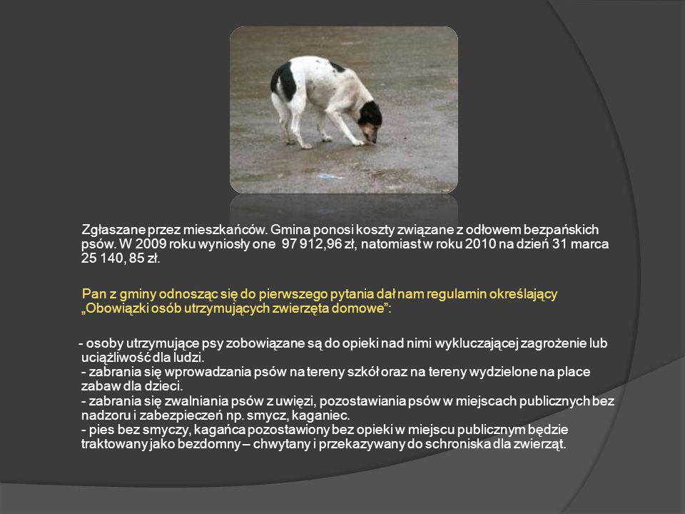 Zgłaszane przez mieszkańców. Gmina ponosi koszty związane z odłowem bezpańskich psów. W 2009 roku wyniosły one 97 912,96 zł, natomiast w roku 2010 na