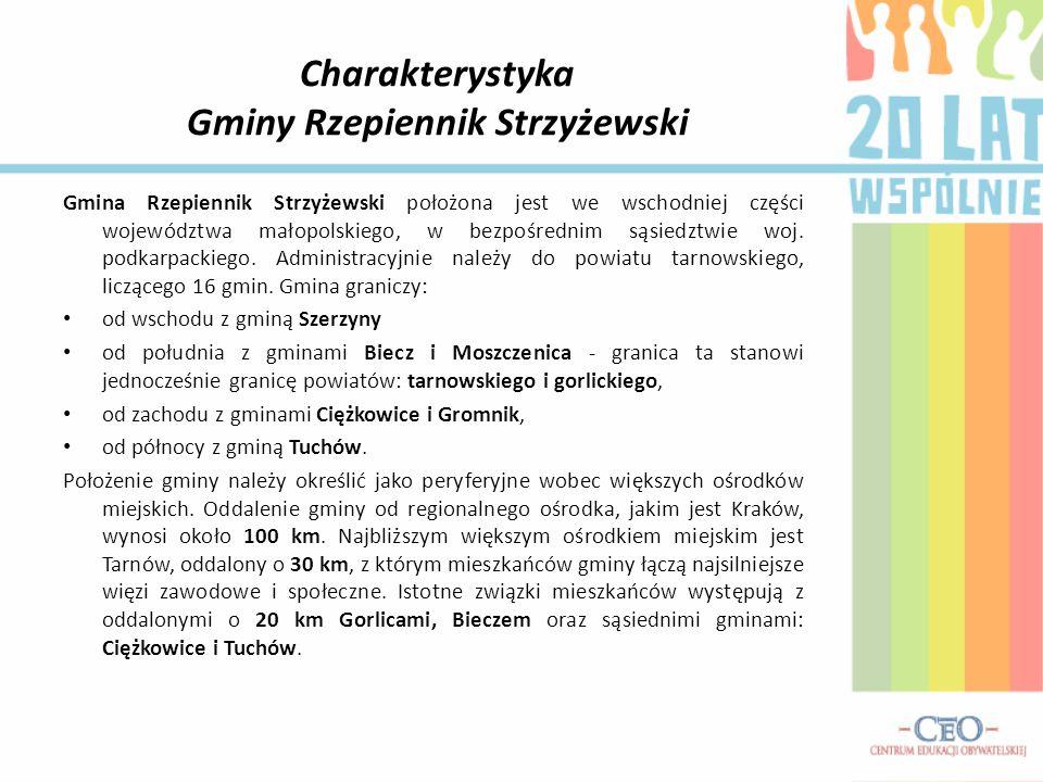 Infrastruktura drogowa Gminy Rzepiennik Strzyżewski Zabiegi czynione przez Wójta Gminy doprowadziły do remontu dróg powiatowych i drogi wojewódzkiej nr 980.