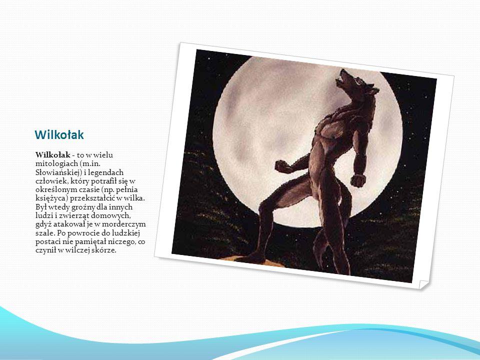 Wilkołak Wilkołak - to w wielu mitologiach (m.in.