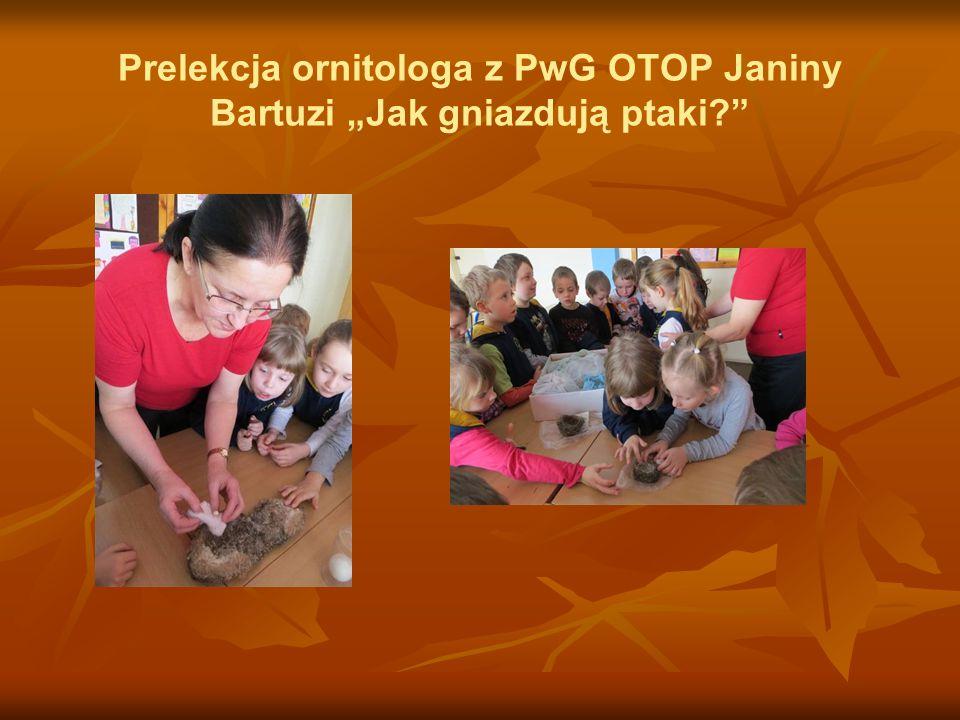 """Prelekcja ornitologa z PwG OTOP Janiny Bartuzi """"Jak gniazdują ptaki?"""""""