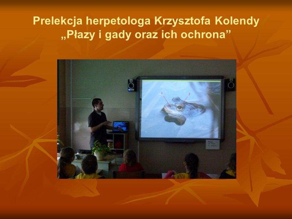 """Prelekcja herpetologa Krzysztofa Kolendy """"Płazy i gady oraz ich ochrona"""""""