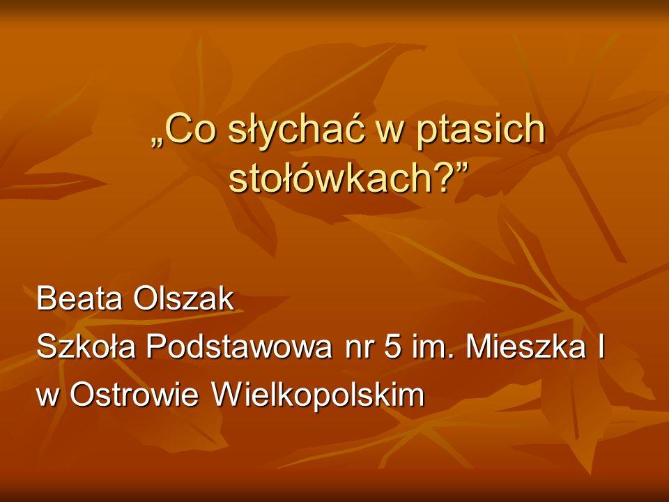 """""""Co słychać w ptasich stołówkach?"""" Beata Olszak Szkoła Podstawowa nr 5 im. Mieszka I w Ostrowie Wielkopolskim"""