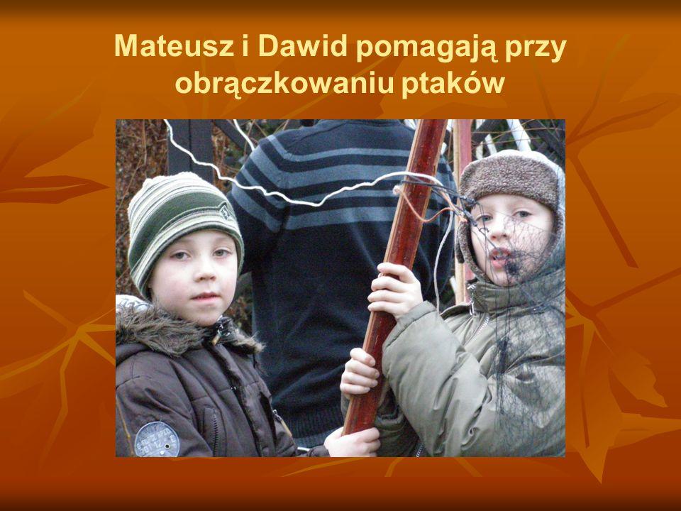 Mateusz i Dawid pomagają przy obrączkowaniu ptaków