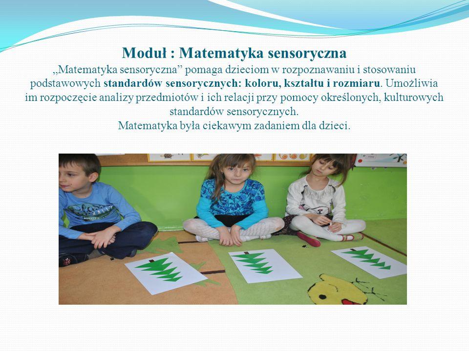 """Moduł : Matematyka sensoryczna """"Matematyka sensoryczna"""" pomaga dzieciom w rozpoznawaniu i stosowaniu podstawowych standardów sensorycznych: koloru, ks"""