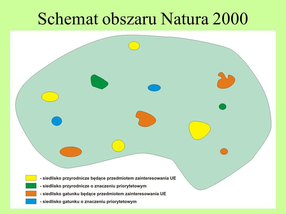 Siedlisko przyrodnicze Siedlisko przyrodnicze będące przedmiotem zainteresowania Wspólnoty – siedlisko przyrodnicze, które na terytorium państw członkowskich Unii Europejskiej: –jest zagrożone zanikiem w swoim naturalnym zasięgu lub –ma niewielki zasięg naturalny w wyniku regresji lub z powodu ograniczonego obszaru występowania wynikającego z jego wewnętrznych, przyrodniczych właściwości, lub –stanowi reprezentatywny przykład typowych cech regionu biogeograficznego występującego w państwach członkowskich Unii Europejskiej;