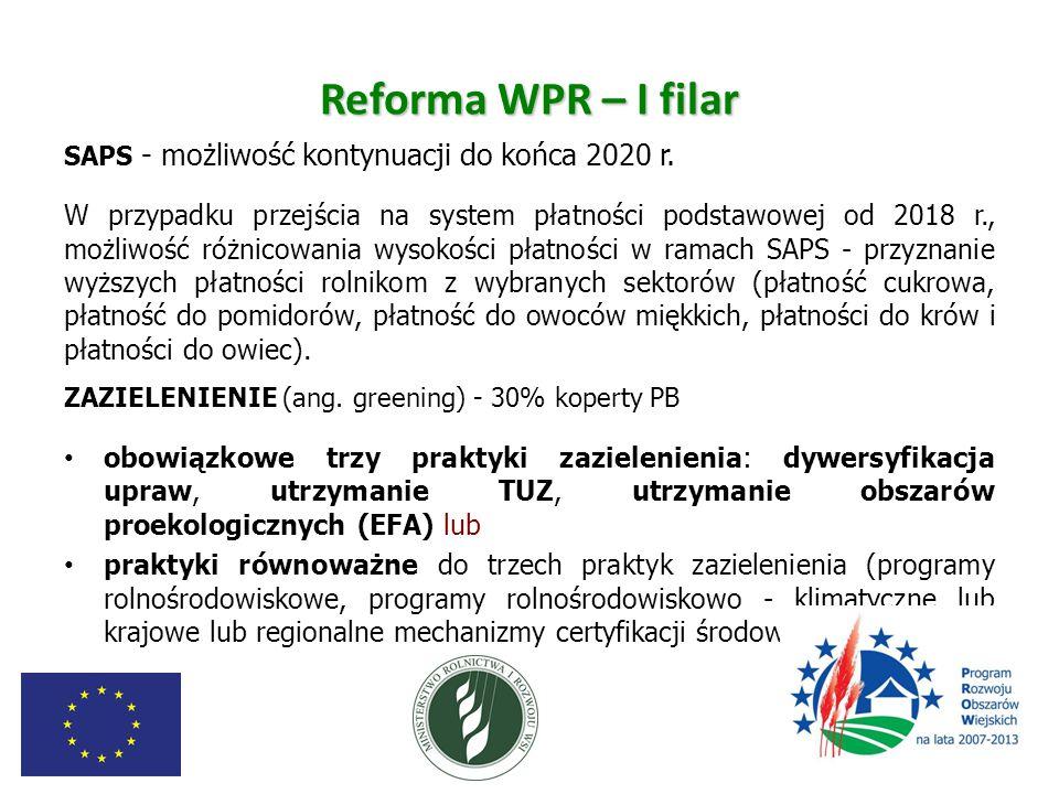 Reforma WPR – I filar SAPS - możliwość kontynuacji do końca 2020 r. W przypadku przejścia na system płatności podstawowej od 2018 r., możliwość różnic