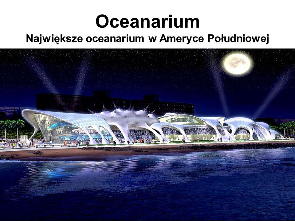 Oceanarium Największe oceanarium w Ameryce Południowej