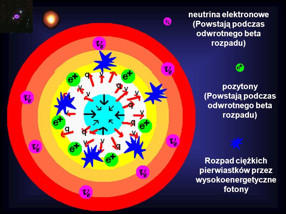 neutrina elektronowe (Powstają podczas odwrotnego beta rozpadu) Rozpad ciężkich pierwiastków przez wysokoenergetyczne fotony pozytony (Powstają podczas odwrotnego beta rozpadu)