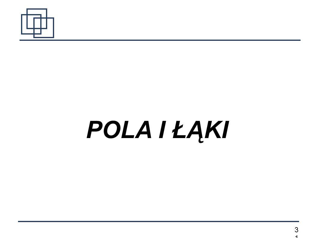 3131 POLA I ŁĄKI
