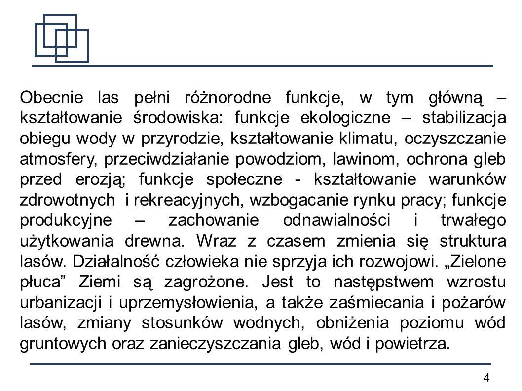 5 Fauna okolic Mławy jest typowa dla środkowej Polski.