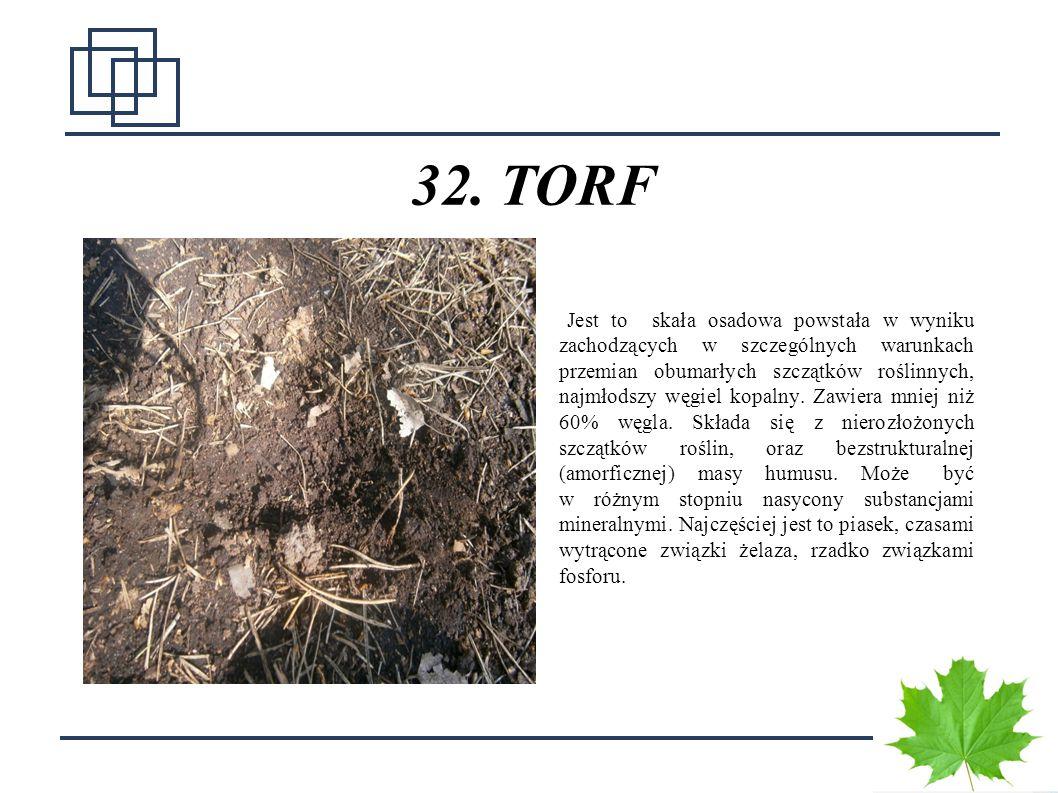 4040 32. TORF Jest to skała osadowa powstała w wyniku zachodzących w szczególnych warunkach przemian obumarłych szczątków roślinnych, najmłodszy węgie