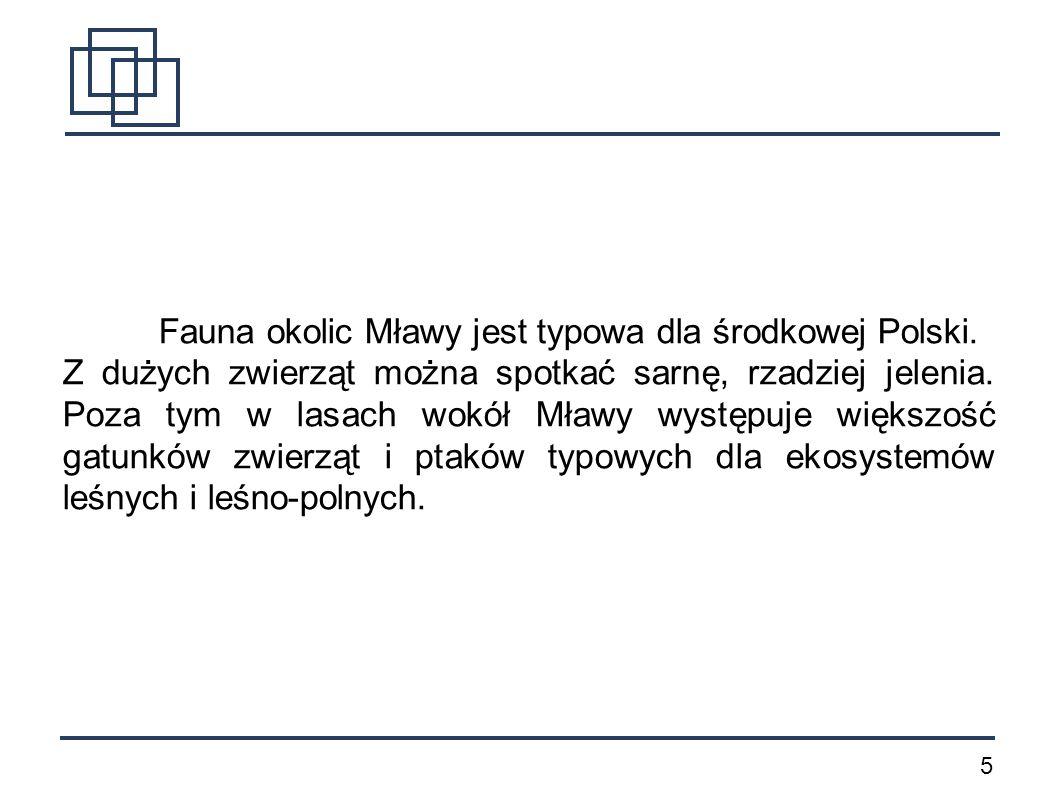 5 Fauna okolic Mławy jest typowa dla środkowej Polski. Z dużych zwierząt można spotkać sarnę, rzadziej jelenia. Poza tym w lasach wokół Mławy występuj