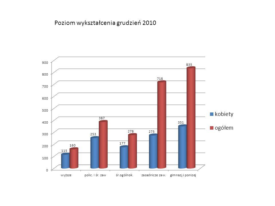 Poziom wykształcenia grudzień 2010