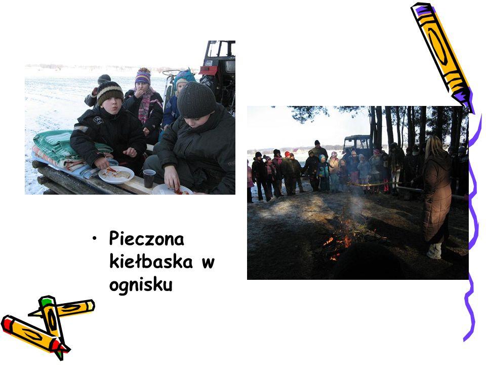 Pieczona kiełbaska w ognisku