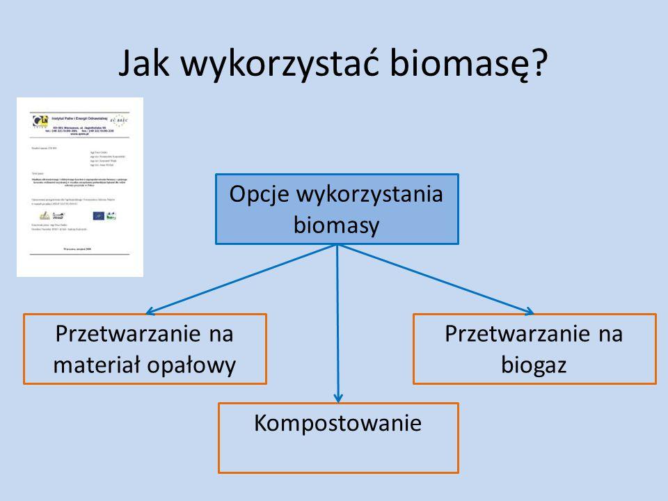 Jak wykorzystać biomasę? Opcje wykorzystania biomasy Kompostowanie Przetwarzanie na materiał opałowy Przetwarzanie na biogaz