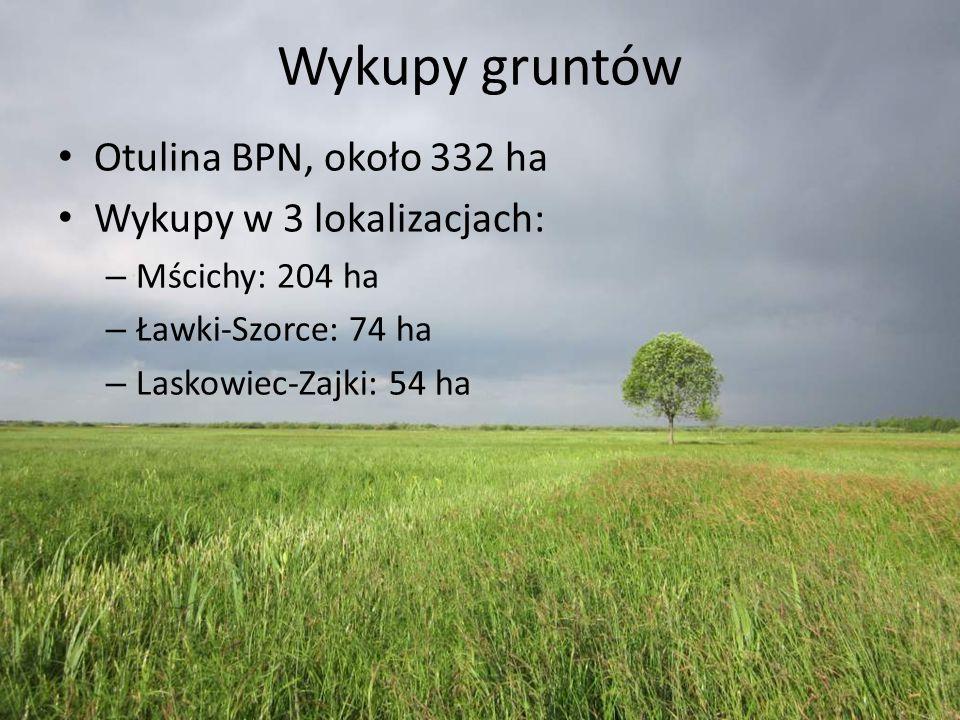 Wykupy gruntów Otulina BPN, około 332 ha Wykupy w 3 lokalizacjach: – Mścichy: 204 ha – Ławki-Szorce: 74 ha – Laskowiec-Zajki: 54 ha
