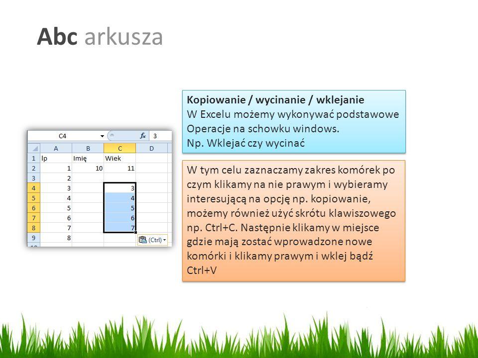 Abc arkusza Kopiowanie / wycinanie / wklejanie W Excelu możemy wykonywać podstawowe Operacje na schowku windows.