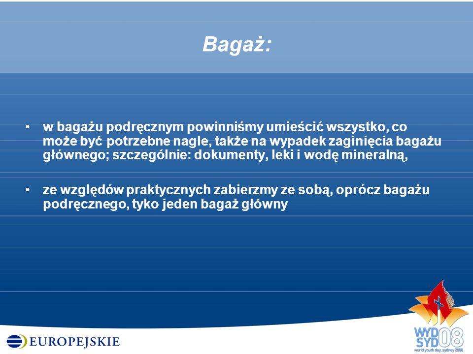 Bagaż: w bagażu podręcznym powinniśmy umieścić wszystko, co może być potrzebne nagle, także na wypadek zaginięcia bagażu głównego; szczególnie: dokume