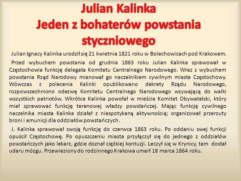 Julian Ignacy Kalinka urodził się 21 kwietnia 1821 roku w Bolechowicach pod Krakowem. Przed wybuchem powstania od grudnia 1863 roku Julian Kalinka spr