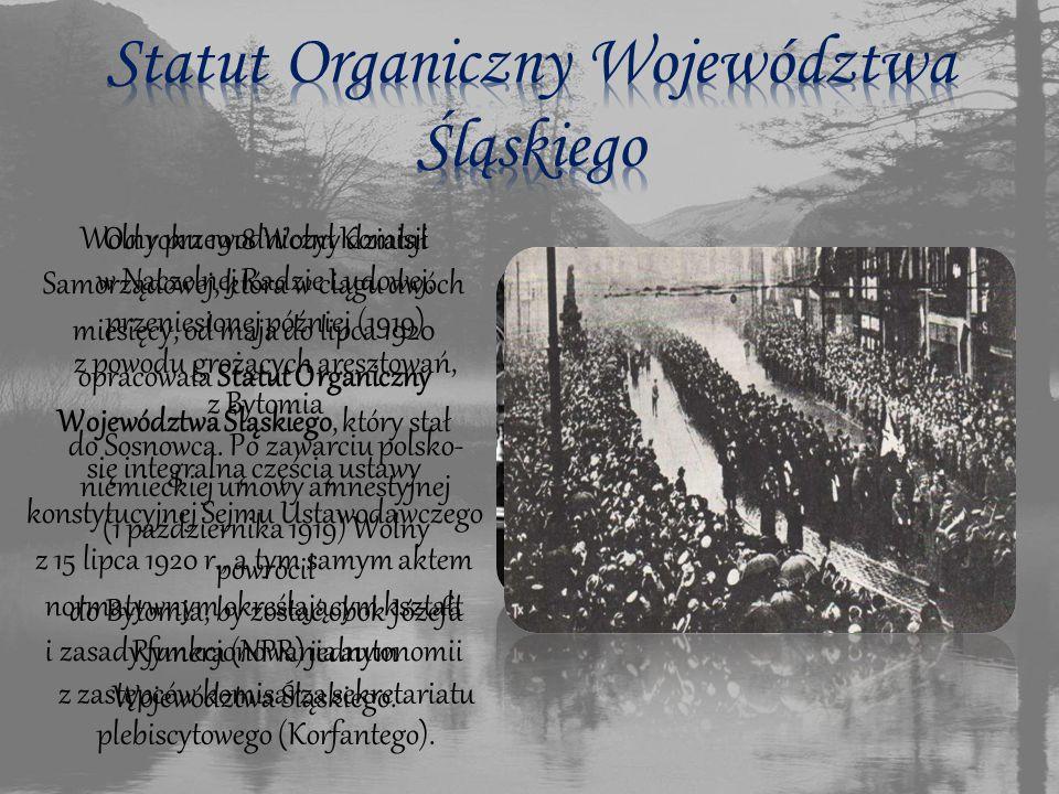 Od roku 1918 Wolny działał w Naczelnej Radzie Ludowej, przeniesionej później (1919) z powodu grożących aresztowań, z Bytomia do Sosnowca.