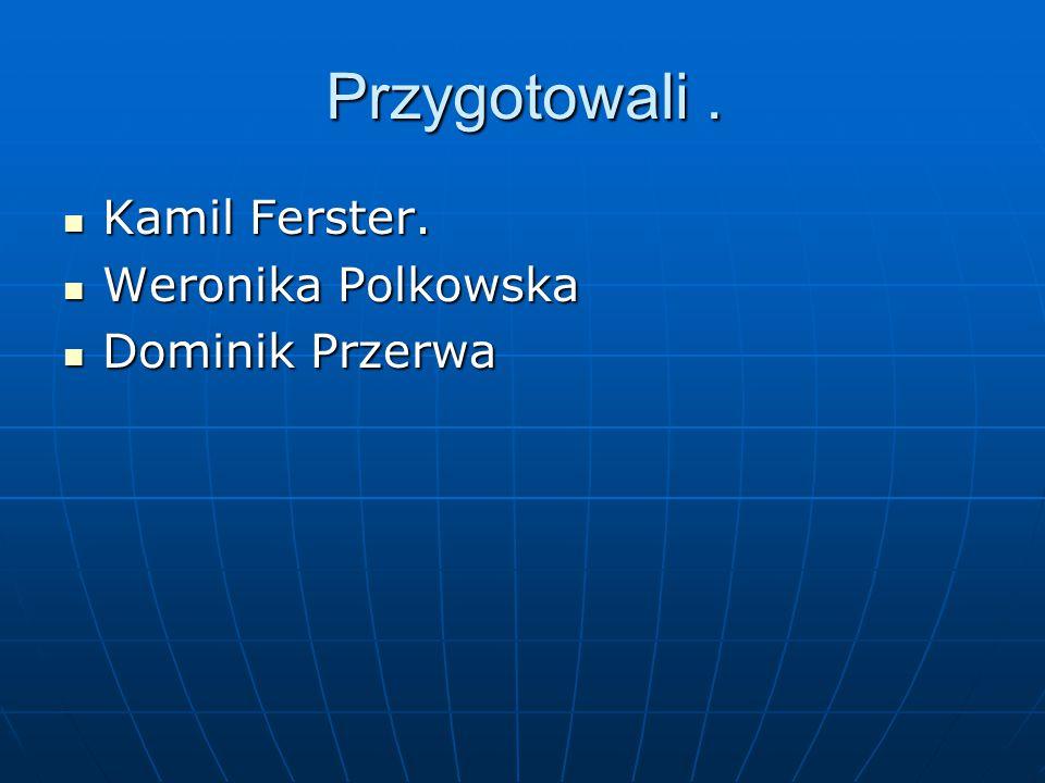 Przygotowali. Kamil Ferster. Kamil Ferster. Weronika Polkowska Weronika Polkowska Dominik Przerwa Dominik Przerwa