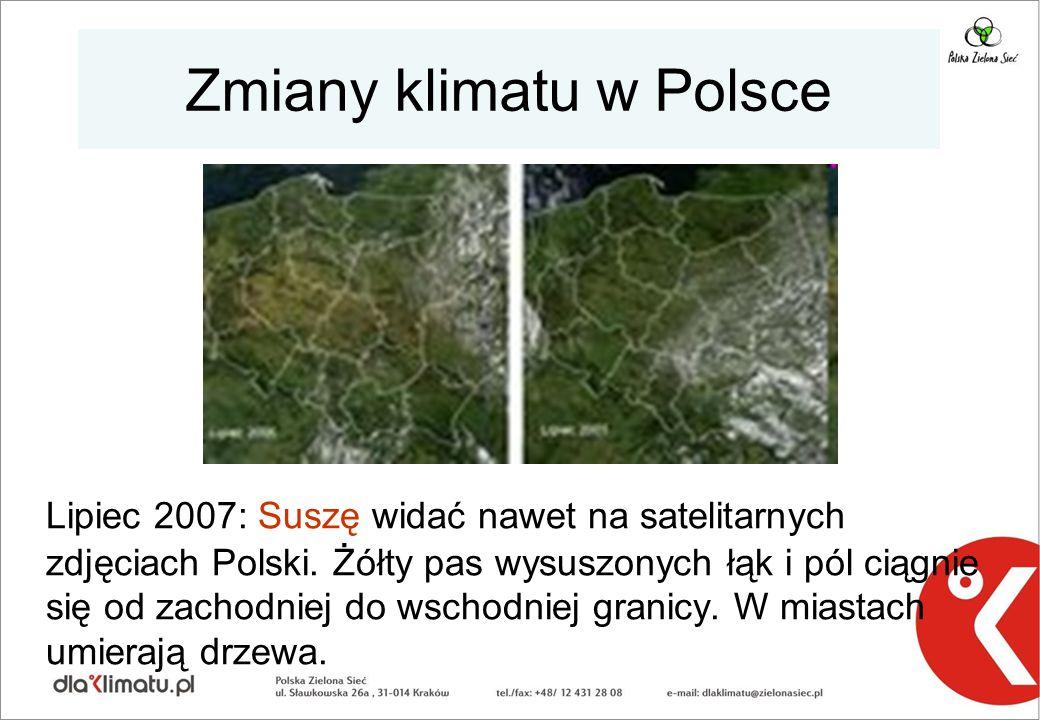 Zmiany klimatu w Polsce Lipiec 2007: Suszę widać nawet na satelitarnych zdjęciach Polski. Żółty pas wysuszonych łąk i pól ciągnie się od zachodniej do