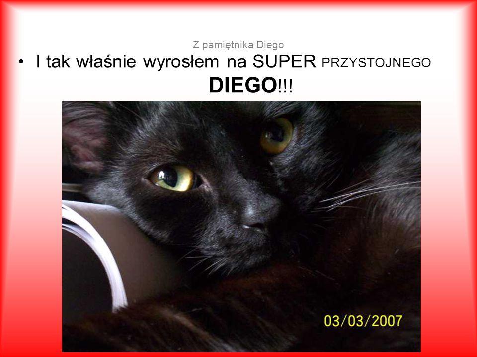 Z pamiętnika Diego I tak właśnie wyrosłem na SUPER PRZYSTOJNEGO DIEGO !!!