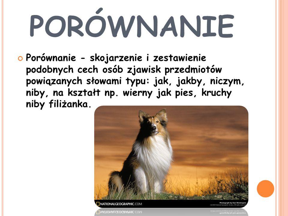 P RZENOŚNIA / METAFORA Przenośnia-językowy środek stylistyczny, niezwykłe zestawienie słów o innym znaczeniu niż dosłowny sens wyrazów np.