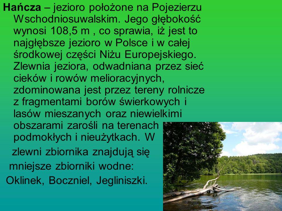 Hańcza – jezioro położone na Pojezierzu Wschodniosuwalskim. Jego głębokość wynosi 108,5 m, co sprawia, iż jest to najgłębsze jezioro w Polsce i w całe