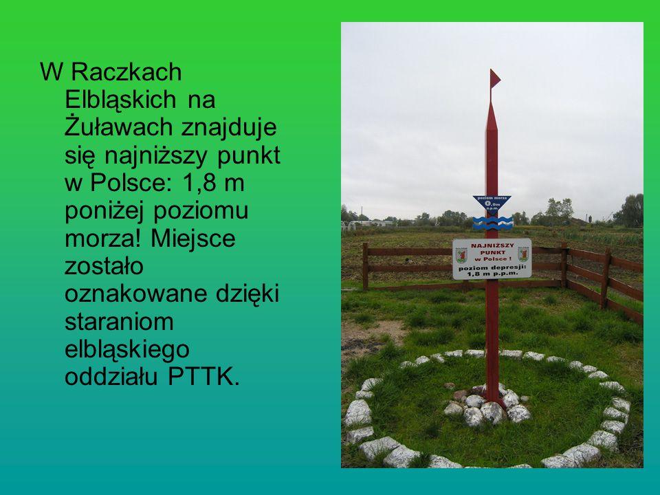 W Raczkach Elbląskich na Żuławach znajduje się najniższy punkt w Polsce: 1,8 m poniżej poziomu morza! Miejsce zostało oznakowane dzięki staraniom elbl