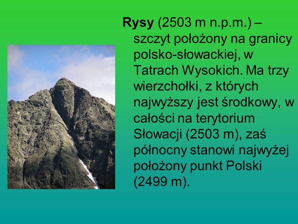 Rysy (2503 m n.p.m.) – szczyt położony na granicy polsko-słowackiej, w Tatrach Wysokich. Ma trzy wierzchołki, z których najwyższy jest środkowy, w cał