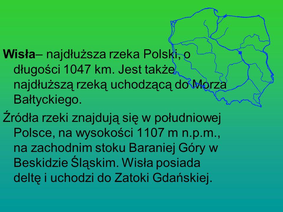 Wisła– najdłuższa rzeka Polski, o długości 1047 km. Jest także najdłuższą rzeką uchodzącą do Morza Bałtyckiego. Źródła rzeki znajdują się w południowe