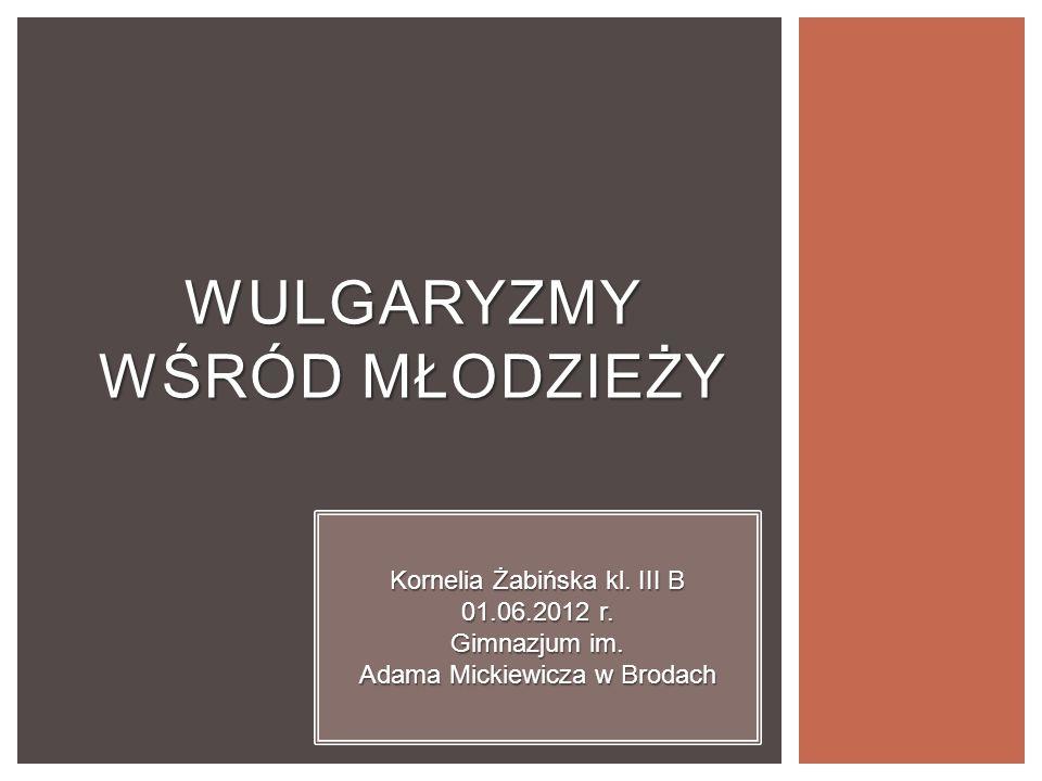 WULGARYZMY WŚRÓD MŁODZIEŻY Kornelia Żabińska kl.III B 01.06.2012 r.