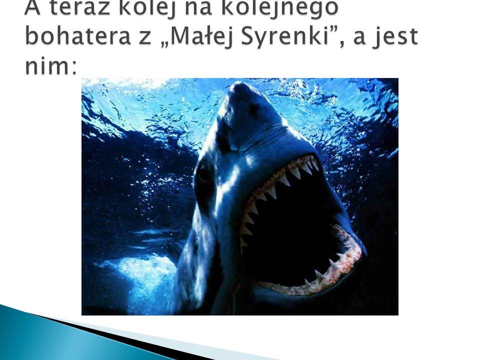  To jedna z największych ryb, osiągaj długość nawet do 20 m, a masę ciała nawet do 12 ton.
