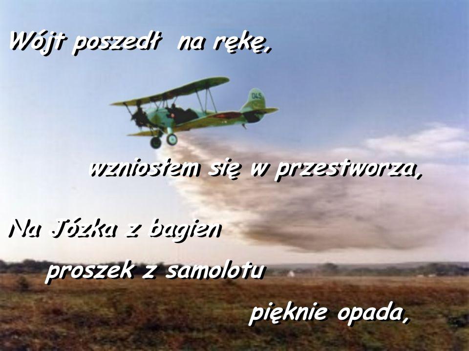 Mówię: Daj mi wójcie samolot i proszek,, Mówię: Daj mi wójcie samolot i proszek,, Józka Ci dostarczę, nie widzę problemu Józka Ci dostarczę, nie widzę problemu