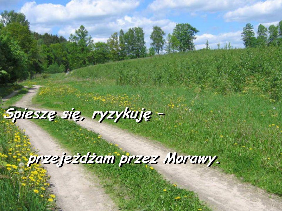Spieszę się, ryzykuję – Spieszę się, ryzykuję – przejeżdżam przez Morawy. przejeżdżam przez Morawy.