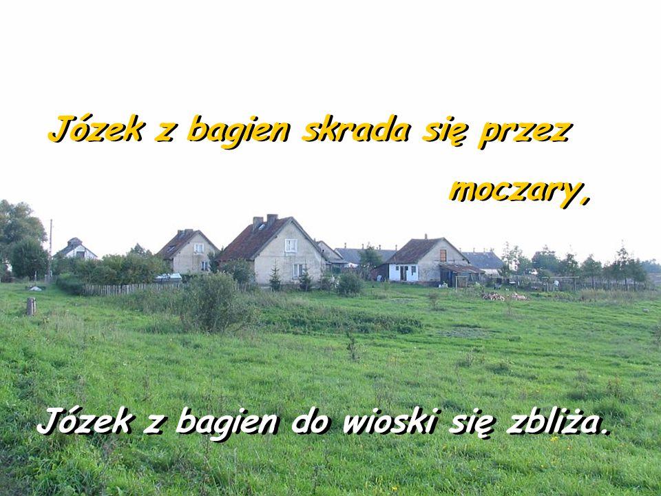 Żre głównie Prażynki Żre głównie Prażynki ma na imię Józek. ma na imię Józek.