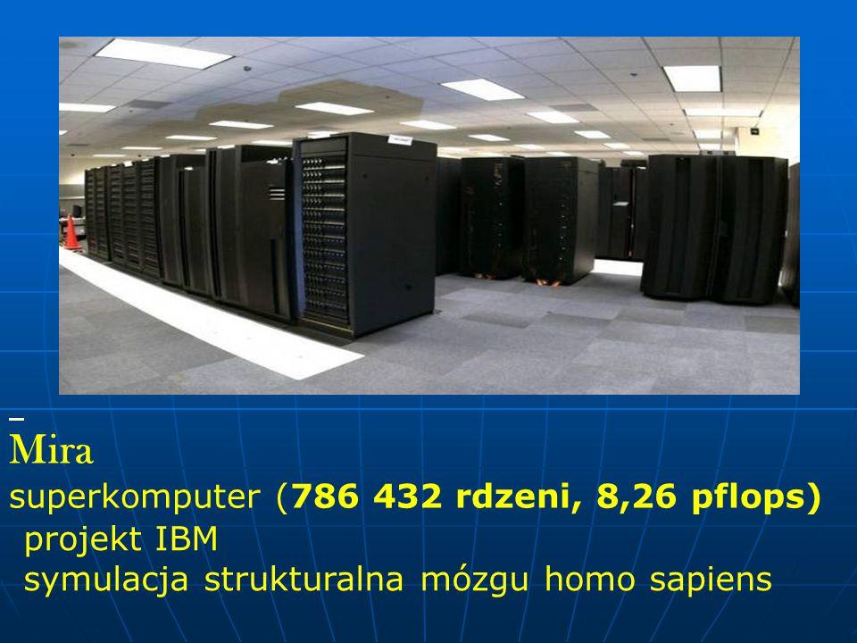 Mira superkomputer (786 432 rdzeni, 8,26 pflops) projekt IBM symulacja strukturalna mózgu homo sapiens