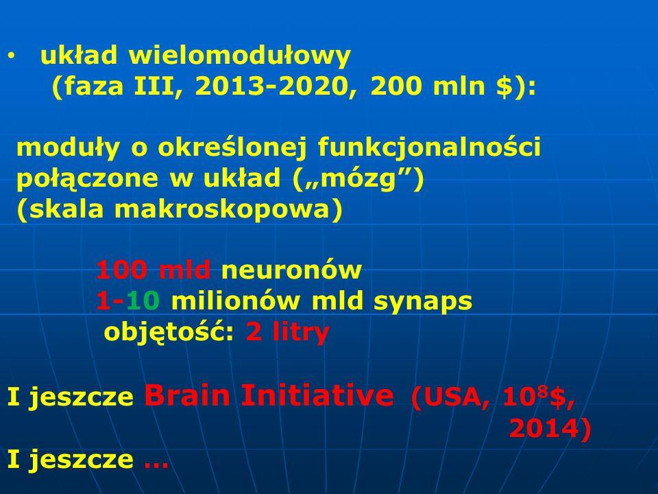 """układ wielomodułowy (faza III, 2013-2020, 200 mln $): moduły o określonej funkcjonalności połączone w układ (""""mózg ) (skala makroskopowa) 100 mld neuronów 1-10 milionów mld synaps objętość: 2 litry I jeszcze Brain Initiative (USA, 10 8 $, 2014) I jeszcze …"""