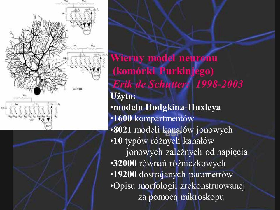 Wierny model neuronu (komórki Purkinjego) Erik de Schutter: 1998-2003 Użyto: modelu Hodgkina-Huxleya1600 kompartmentów8021 modeli kanałów jonowych10 typów różnych kanałów jonowych zależnych od napięcia32000 równań różniczkowych19200 dostrajanych parametrów Opisu morfologii zrekonstruowanej za pomocą mikroskopu