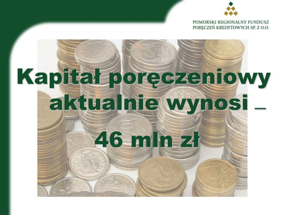 Kapitał poręczeniowy aktualnie wynosi 46 mln zł ____