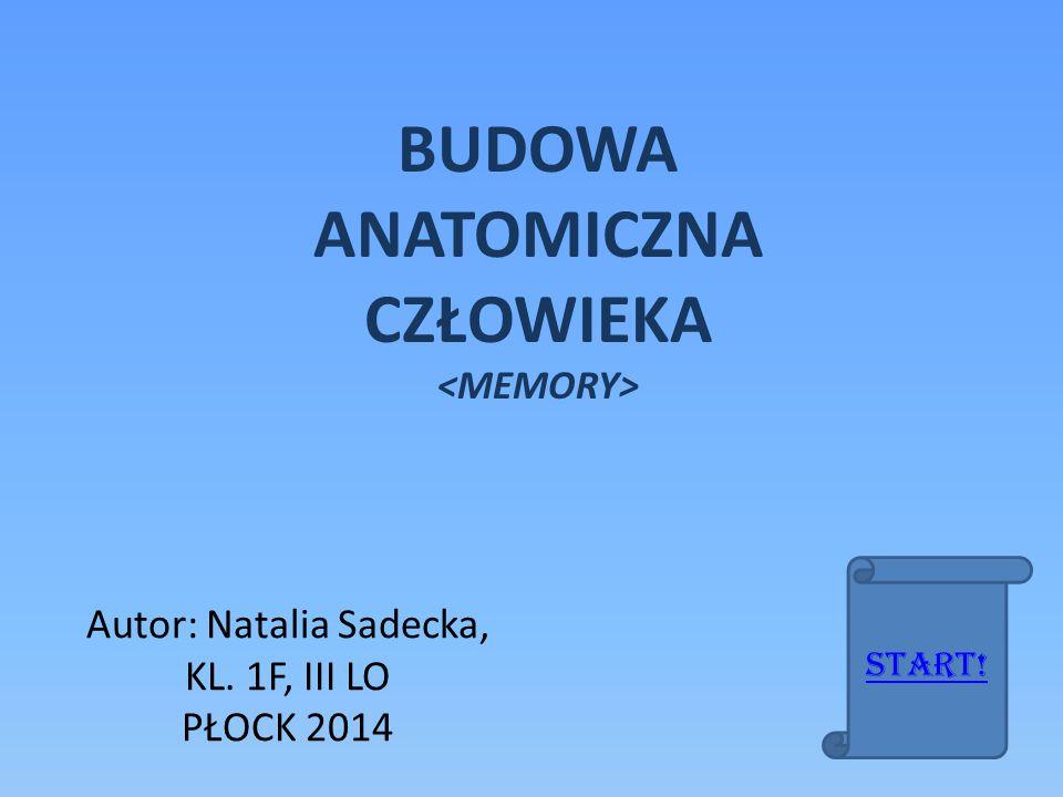 Autor: Natalia Sadecka, KL. 1F, III LO PŁOCK 2014 BUDOWA ANATOMICZNA CZŁOWIEKA Start!