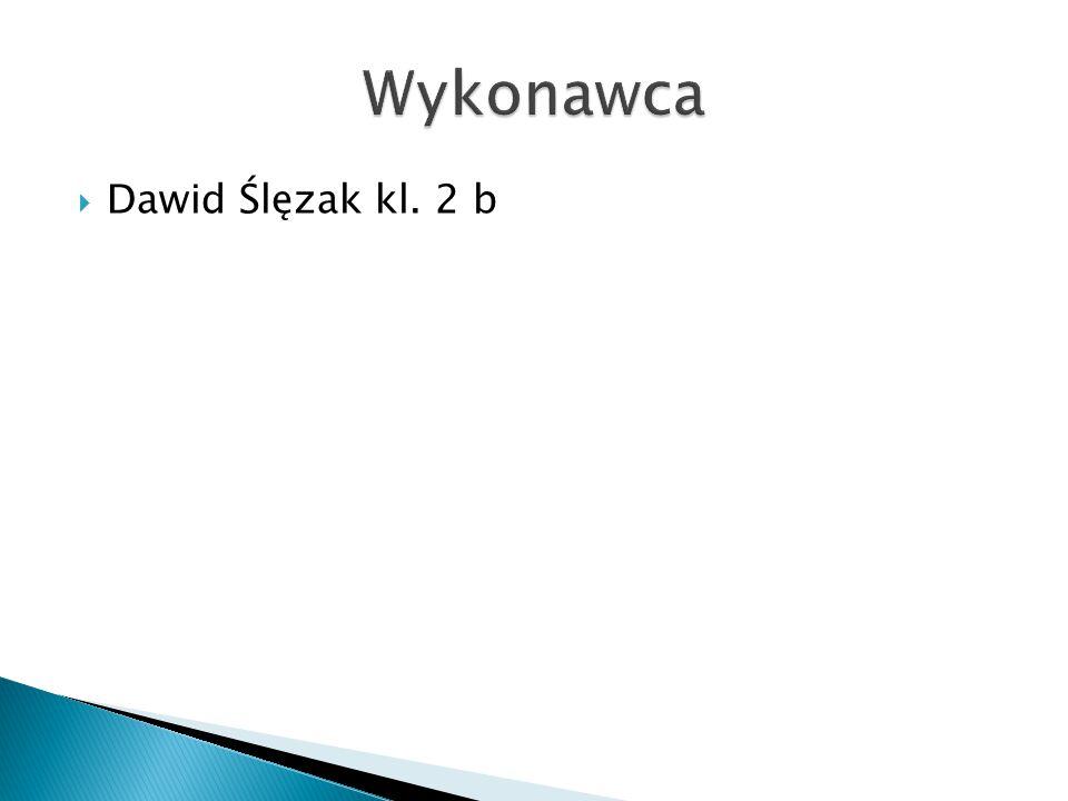  Dawid Ślęzak kl. 2 b