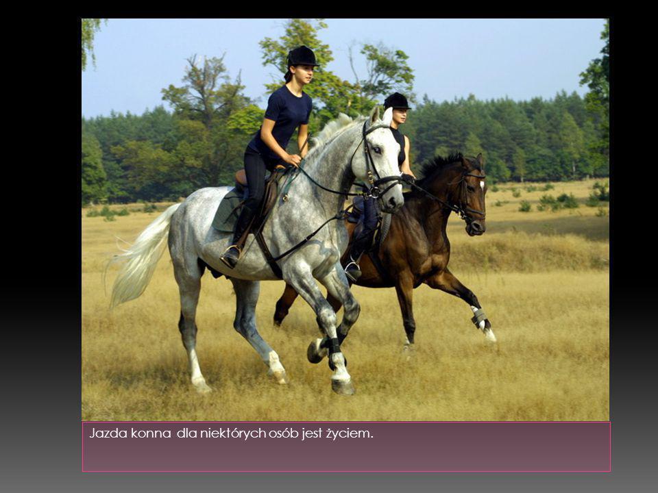  to jedna z form rekreacji, a także pojazd wykorzystywany w kilku dyscyplinach sportowych, takich jak: kolarstwo szosowe, kolarstwo torowe, kolarstwo górskie, itp.