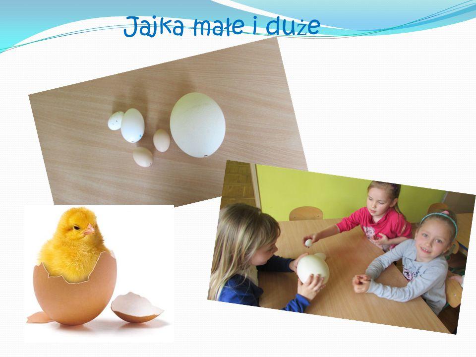Jajka małe i du ż e