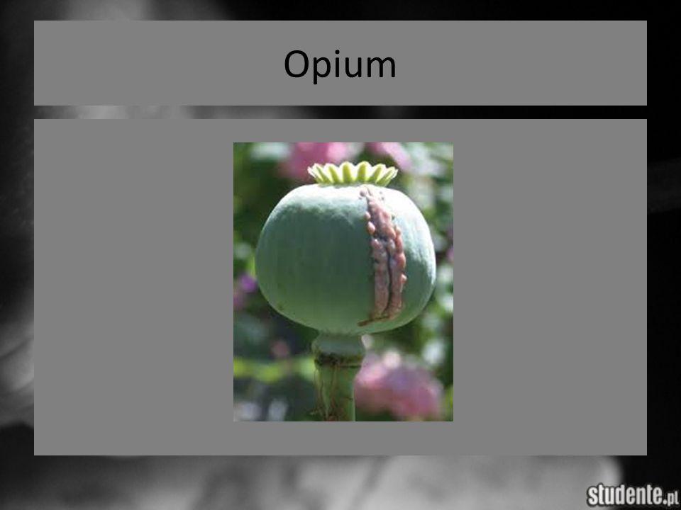 Opium j