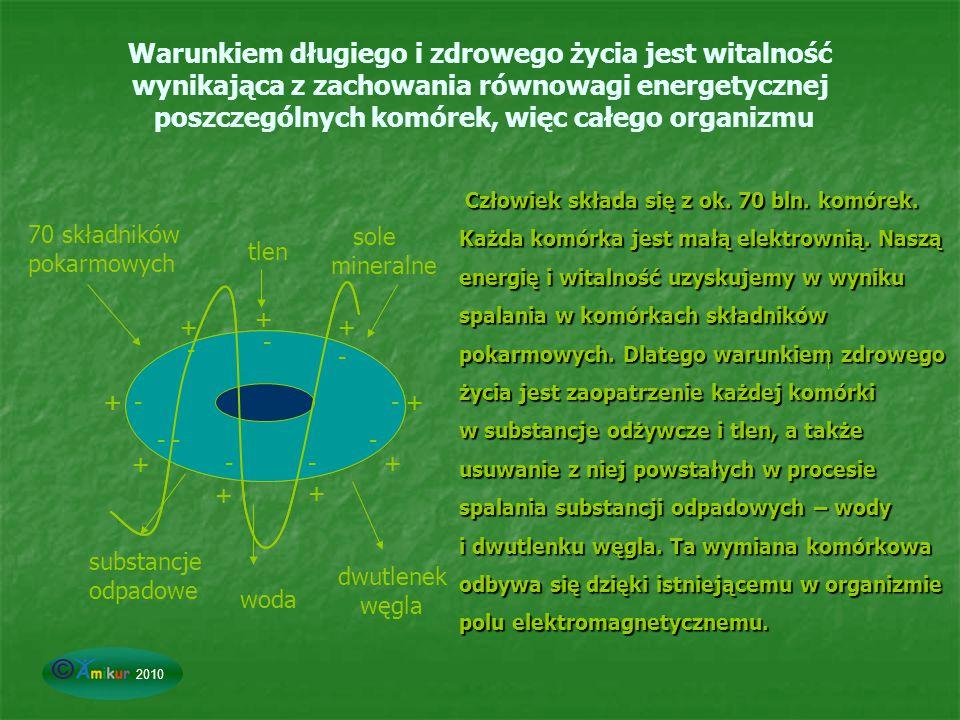 Warunkiem długiego i zdrowego życia jest witalność wynikająca z zachowania równowagi energetycznej poszczególnych komórek, więc całego organizmu Człow