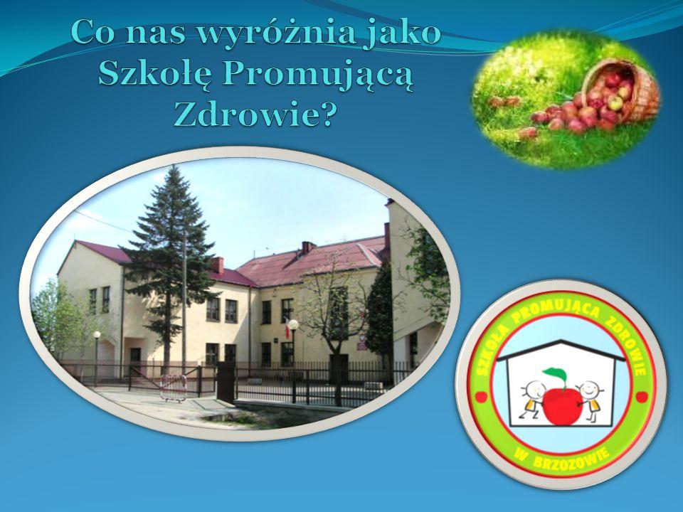 1.Zaszczepienie idei Szkoły Promującej Zdrowie w środowisku lokalnym; 2.