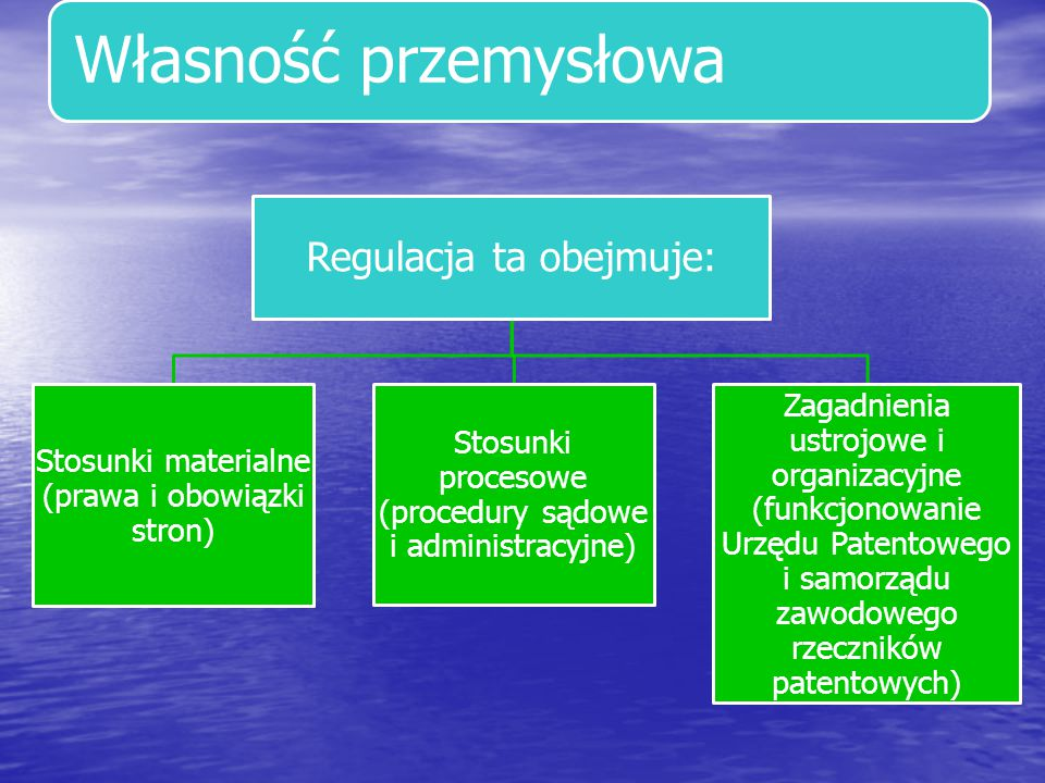 Własność przemysłowa Regulacja ta obejmuje: Stosunki materialne (prawa i obowiązki stron) Stosunki procesowe (procedury sądowe i administracyjne) Zaga