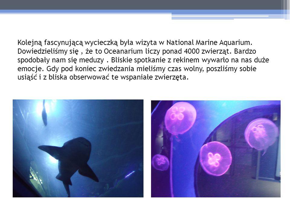 Kolejną fascynującą wycieczką była wizyta w National Marine Aquarium. Dowiedzieliśmy się, że to Oceanarium liczy ponad 4000 zwierząt. Bardzo spodobały